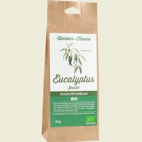 Feuille d'Eucalyptus Bio