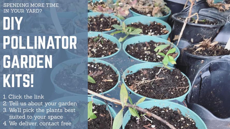 Garden Kits.jpg