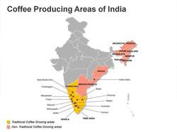 Hindistan Orijin Kahve