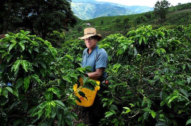 Nikaragua Kahve Orijinie_5z