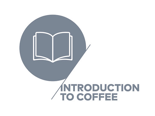 SCA Introduction to Coffee