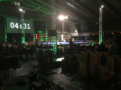 The Ring Events Free Fight Gala3