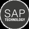 Versione-SAP-p1uuzyz8ex32hheokwwqyrm7v5q