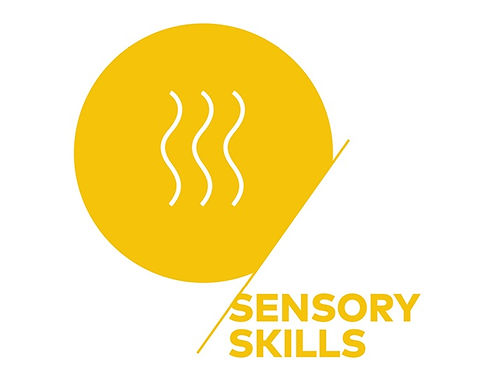 SCA-Sensory Skills.jpg