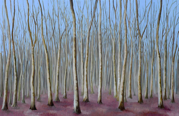Silver Birches - limited edition print