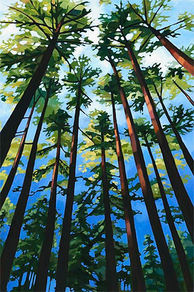Towering Trees - large and small limited edition prints