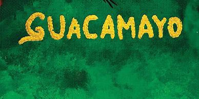 Guacamayo-scaled-1810x905.jpeg