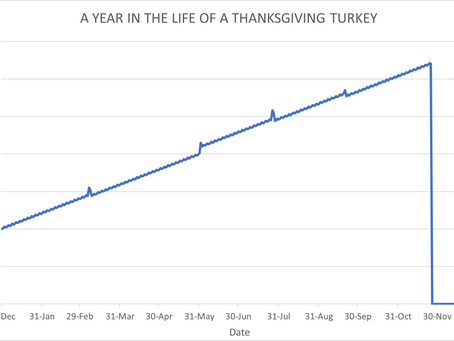Thanksgiving Turkeys And Risk Management - Week of November 23, 2020