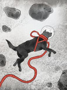 Ground Control to Major Dog
