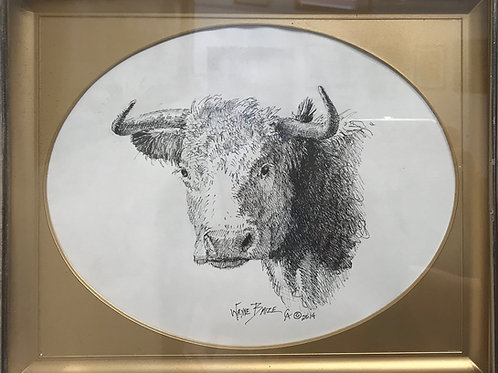 hereford cow pen and ink drawing