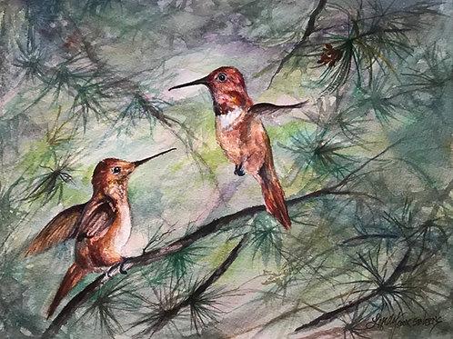 rufous hummingbird pair watercolor