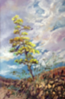 Yellow Century Plant flowers stalk against desert clouds in this miniature pastel painting by Lindy Cook Severns art
