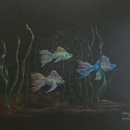 trio of fantasy fish drawing