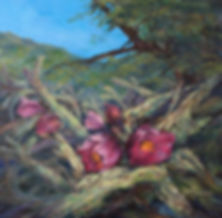 Rosy cactus blooms in this original oil painting by Texas artist Lindy Cook Severns