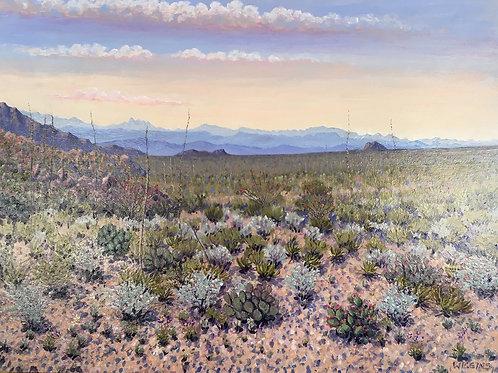 desert vegetation and mountains oil painting