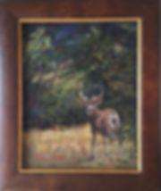 framed painting of mule deer buck in forest