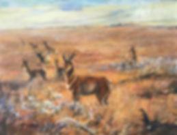 pronghorn antelope in golden grass oil painting
