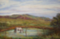 A white horse finds cool turquoise water in this Lindy Cook Severns pastel landscape painting from the Davis Mts, A Long Cool Drink