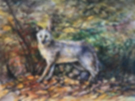 fox in autumn foliage watercolor painting by Lindy Cook Severns