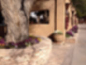 V6 Collection of fine art and southwestern decor in Marathon, TX represents Lindy Severns art