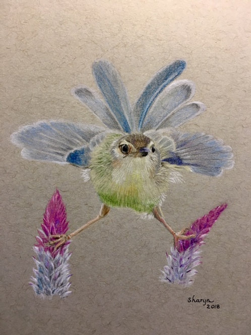 hummingbird stretched between flowers drawing