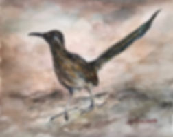 roadrunner taking a walk watercolor by Lindy Cook Severns