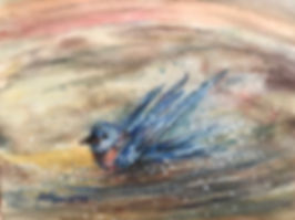 Blue bird splashing in water hole watercolor by Lindy Severns