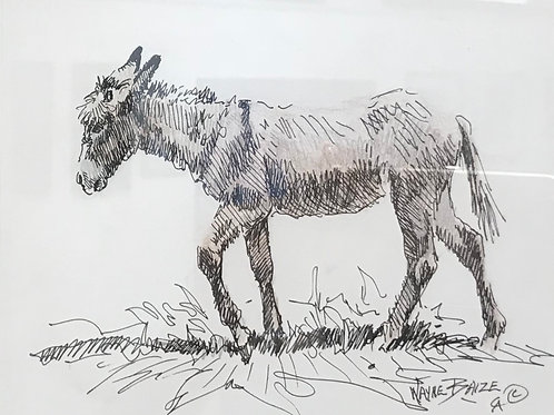 broken down old mule pen and ink drawing