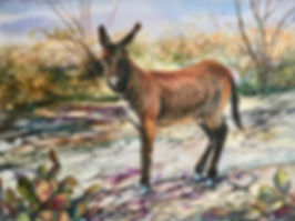 wild burro in a rocky draw with cactus watercolor by Lindy Cook Severns