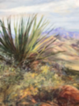 yucca and grasses in high desert canyons oil painting detail by Lindy Cook Severns