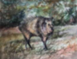 Bristling javelina wildlife painting by Lindy Cook Severns