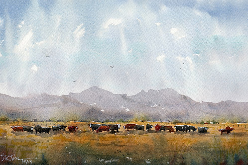 cattle on golden range beneath blue mountains watercolor