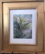 flowering yucca watercolor in gold frame by Lindy Cook Severns