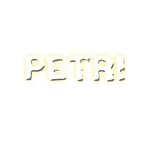 PETRI_white_logo_for-web_transparent.png