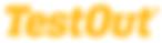 TestOut Logo