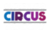 SuperHero Circus Academy written log with multiple colors