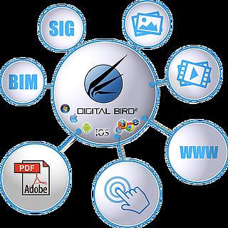 DigitalBird_Schema.png