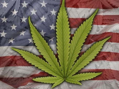 Marijuana And America