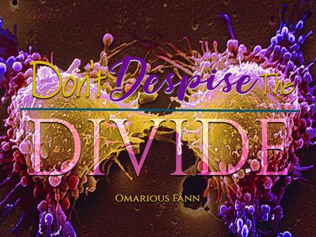 Don't Despises The Divide!