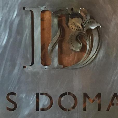 Iris Domain
