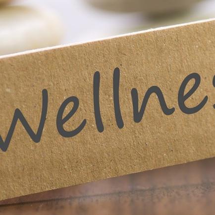 Health, Healing & Wellness is Possible...