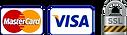 mastercard-visa-ssl-v2-1.png