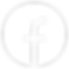 icons8-facebook-nouveau-100.png