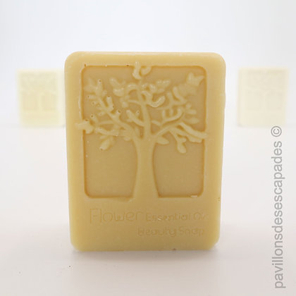 Soap Camillia - Goat's milk