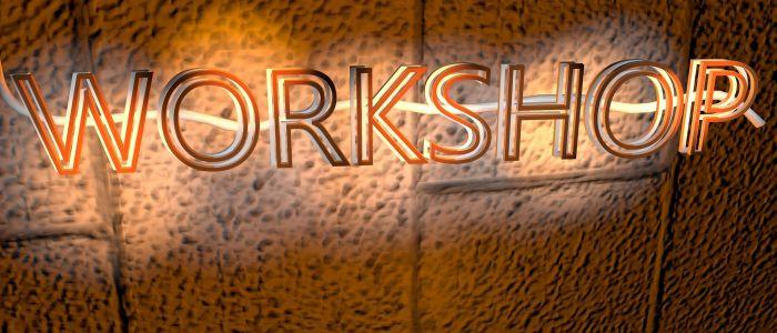 Artist CV Workshop