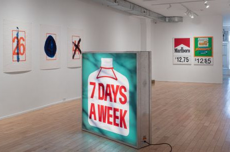 Exhibition Walkthrough - Ryan Park