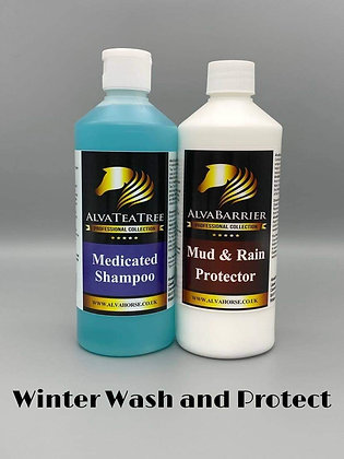 Winter wash and protect