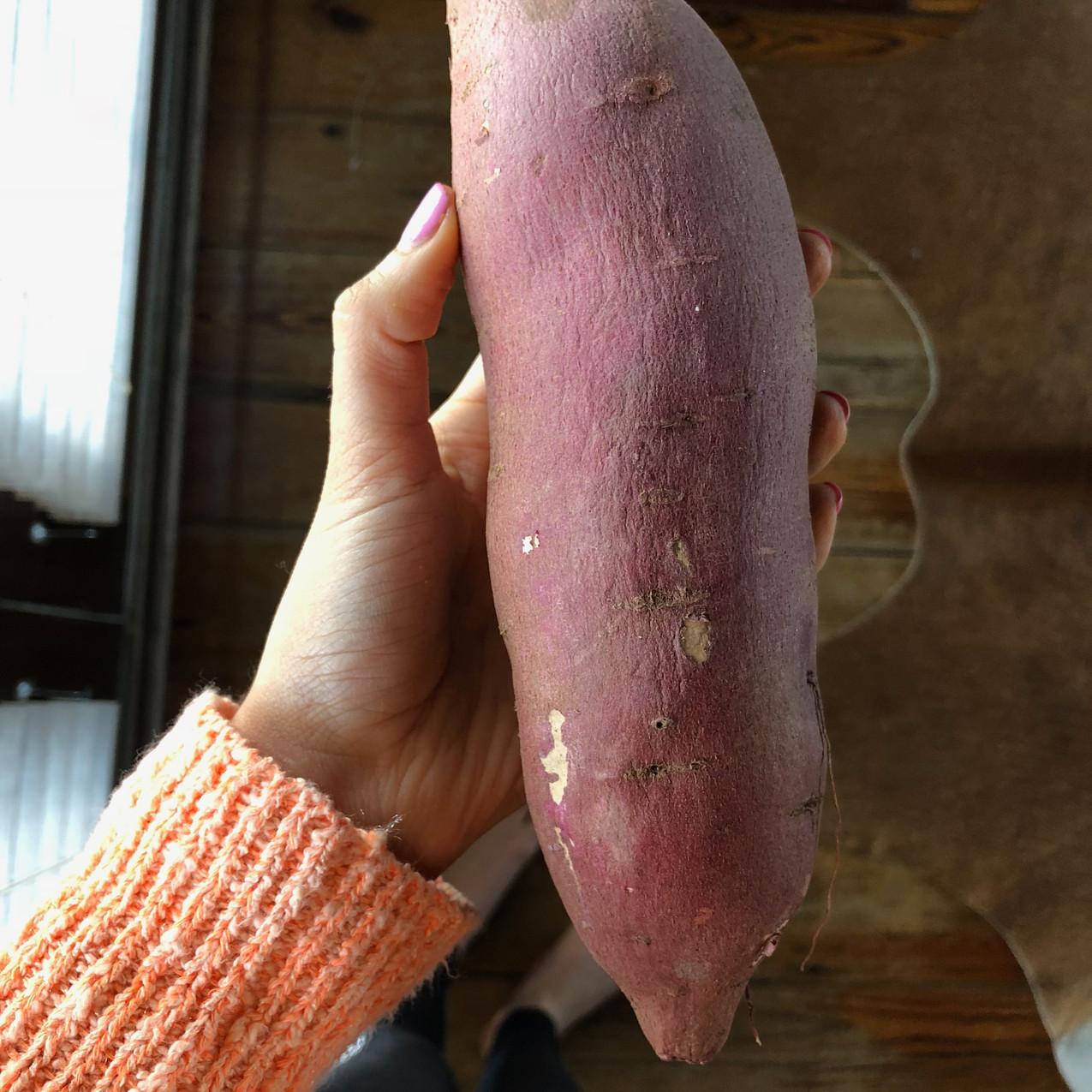 Japanese Sweet Potatoes