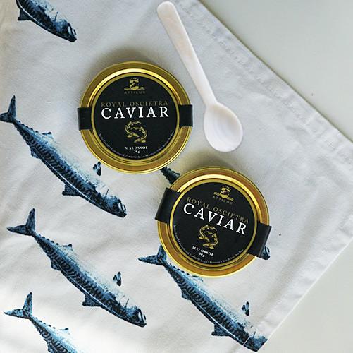 Attilus Caviar