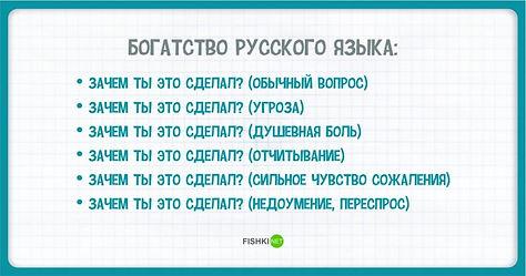20201226-164333-10-elki.jpg
